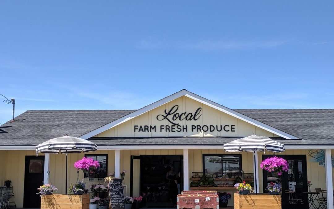 Exciting News! Our Collaboration with Backroads Family Farm Market